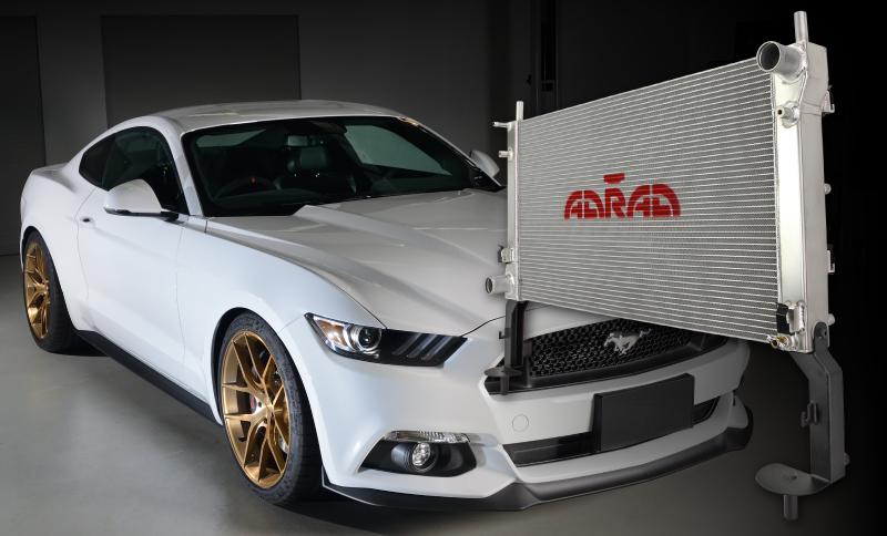 FM-Mustang-Turbo-BLOG-POST.jpg